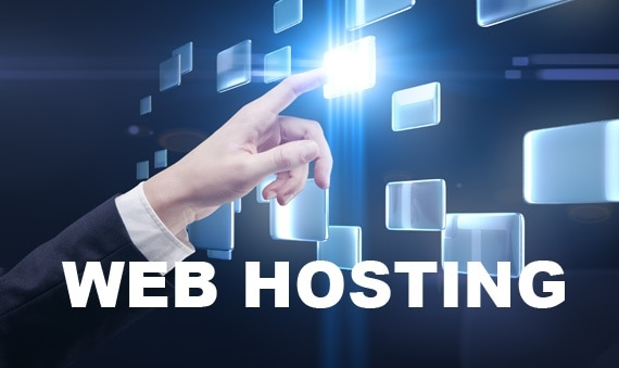 Web Hosting - Complete WordPress Guide for Just Born Bloggers